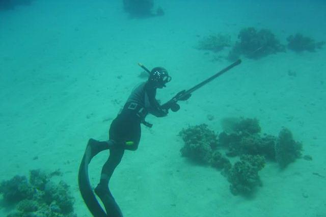 Подводная охота - практические рекомендации и полезные советы