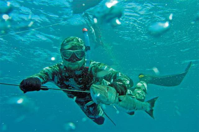 Основные принципы подводной охоты