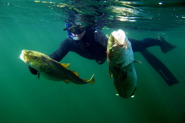 Подводная охота - что стоит учесть
